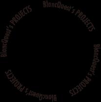 Blanc Quest Case accent